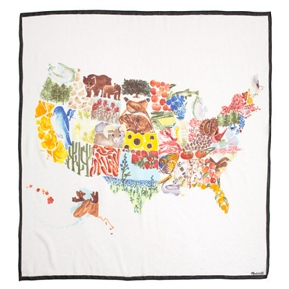 Painted States Scarf