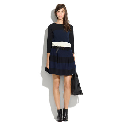 Striped Pleat Skirt
