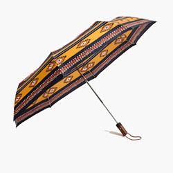 Rainy-Day Umbrella