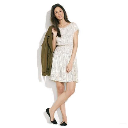 Alexa Chung for Madewell Betty Tea Dress