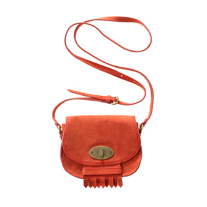 The Brownstone Suede Minibag