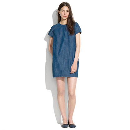 Denim Shiftdress