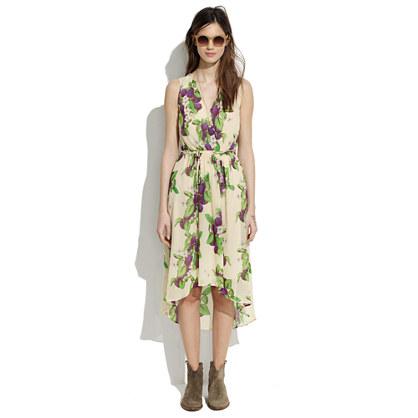 Sugarplum Dress