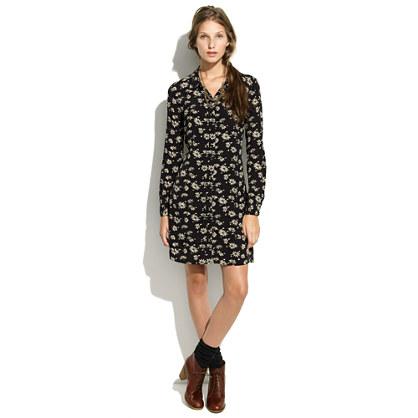 Alexa Chung for Madewell Penny Dress