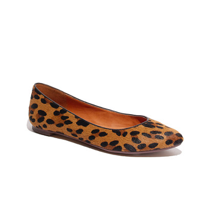 The Sidewalk Skimmer in Leopard