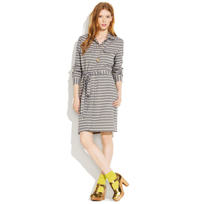 Indigo Stripescreen Shirtdress