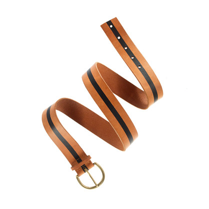 Stripeview Belt