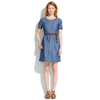 Chambray Songbird Dress