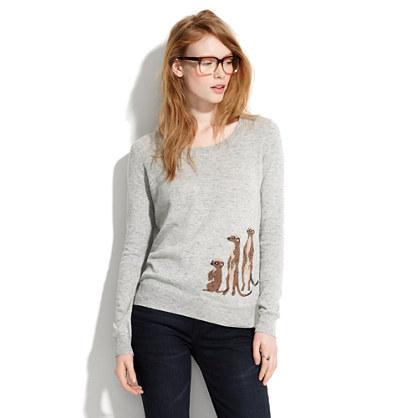 Mini-Meerkat Pullover