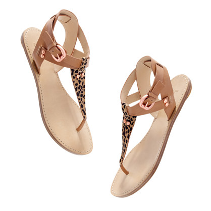 Belle by Sigerson Morrison® Randy leopard Sandals