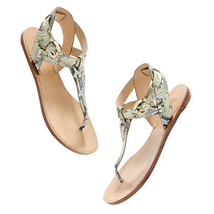 Belle by Sigerson Morrison® Randy snake Sandals