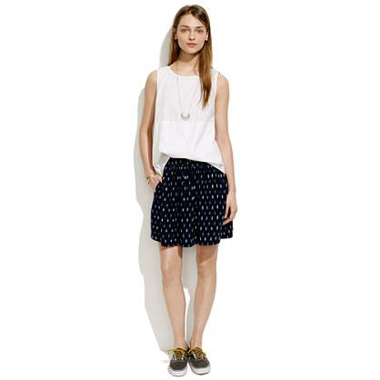 Turntable Skirt in Ikat