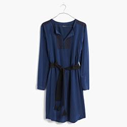 Silk Embroidered Prologue Dress