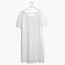 Lace Lyric Dress