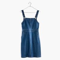 Denim Hillview Dress