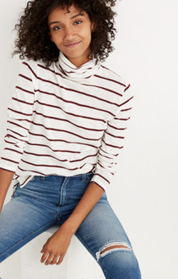 Whisper Cotton Turtleneck in Wellton Stripe