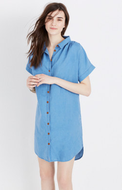 Indigo Central Shirtdress