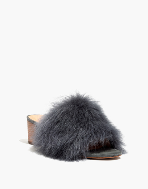 The Shearling Heidi Mule in black sea image 2