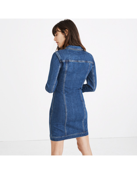 Denim Seamed Button-Front Dress