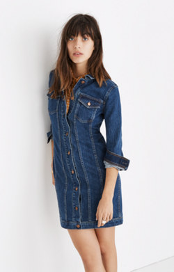 Denim Seamed Button-Front Dress
