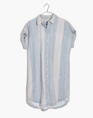 Central Shirtdress in Rawley Stripe