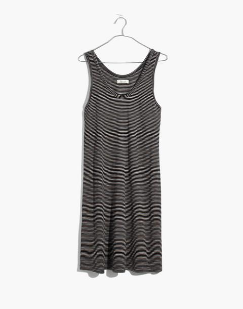 Striped Scoopneck Knit Dress