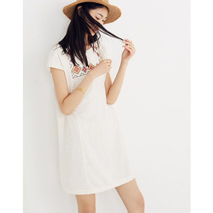 Embroidered Pinon Dress