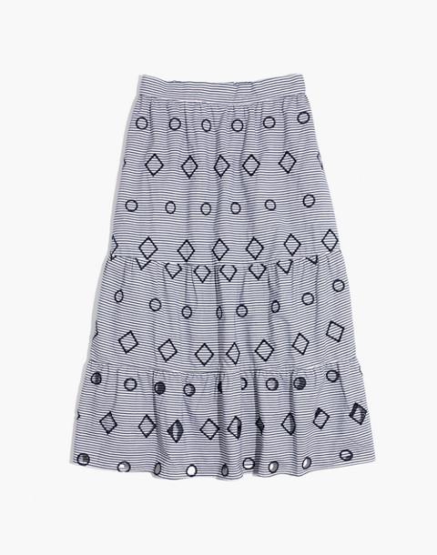 Embroidered Stripe Midi Skirt in nightfall image 4