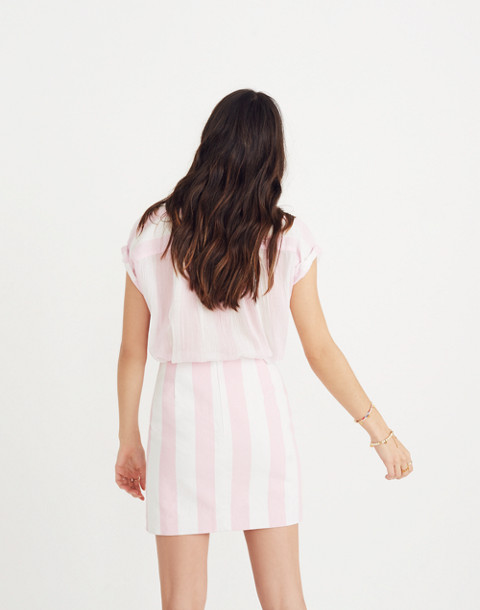 Gamine Skirt in Cara Stripe in petal pink image 3