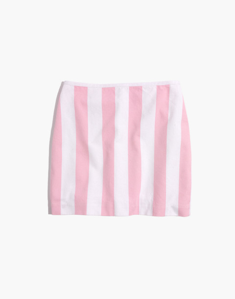 Gamine Skirt in Cara Stripe in petal pink image 4