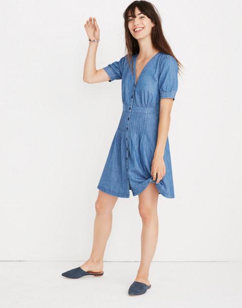 Denim Daylily Dress