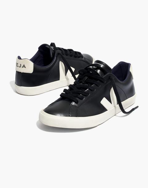Veja™ Esplar Low Sneakers in Black Leather in black pierre image 1