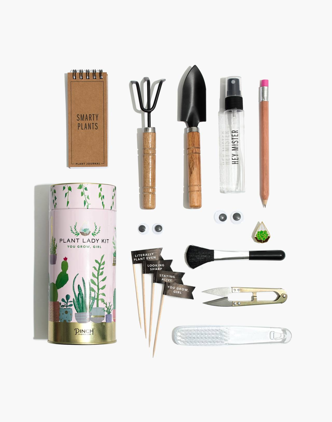 Pinch Provisions® Plant Lady Kit in plant kit image 2