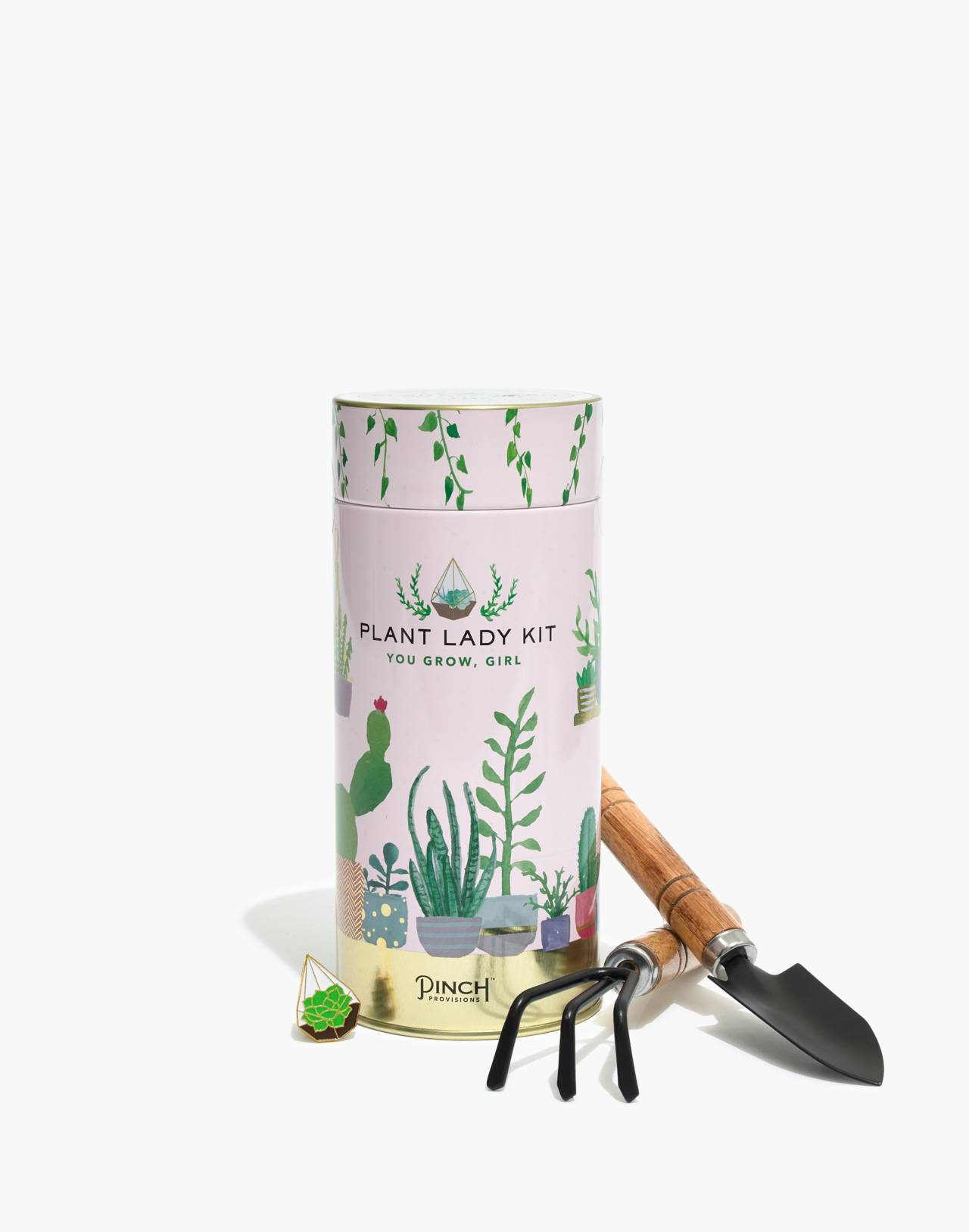 Pinch Provisions® Plant Lady Kit in plant kit image 1