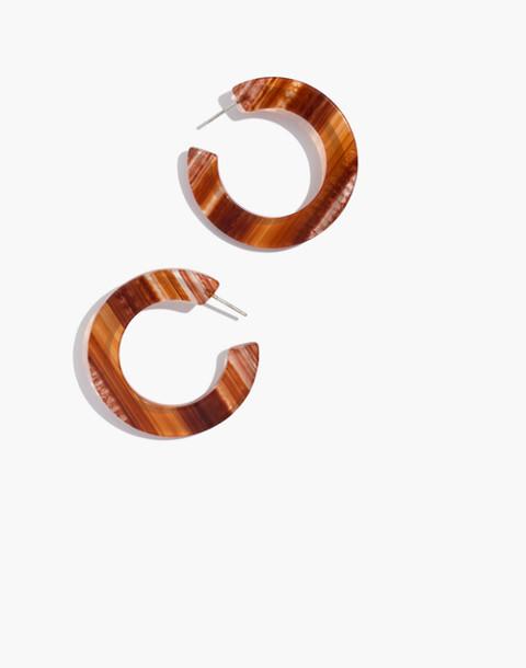 Striped Resin Hoop Earrings in burnt sienna image 1