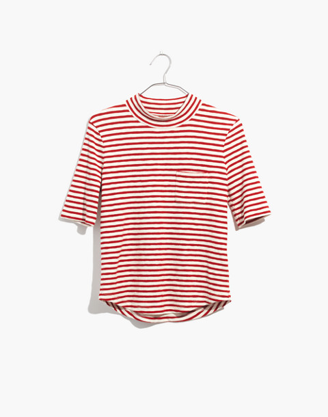Mockneck Shirttail Tee in Solecito Stripe in white wash image 4