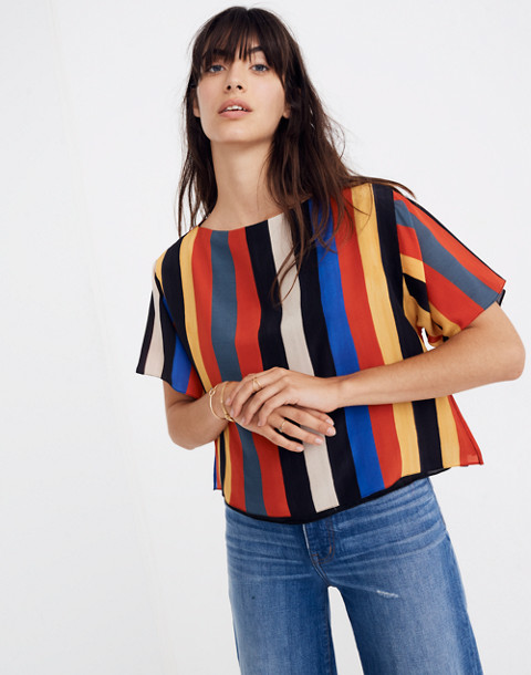 Whit® Silk Neil Tee in Camera Stripe in multi stripe image 1