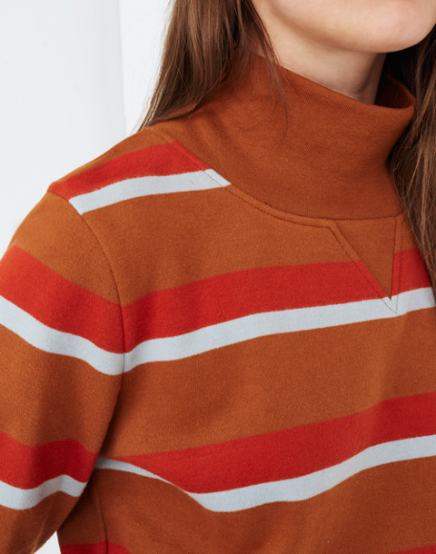 Turtleneck Sweatshirt in Stripe in burnt sienna image 3
