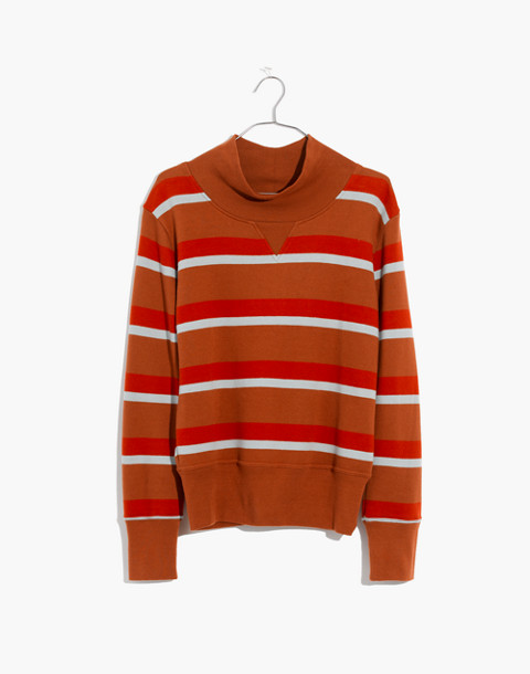 Turtleneck Sweatshirt in Stripe in burnt sienna image 4