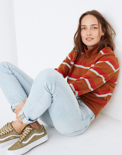 Turtleneck Sweatshirt in Stripe in burnt sienna image 1
