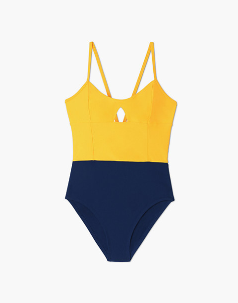 Summersalt® Swan Dive One-Piece Swimsuit in Blue