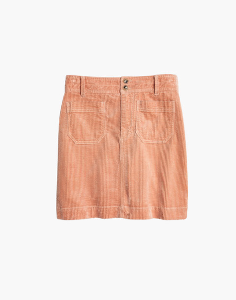 Corduroy A-Line Mini Skirt in tinted blush image 4