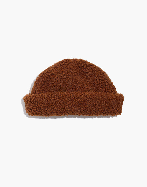 Brixton® Ginsberg Hat in brown image 1