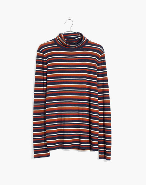 Fine Ribbed Turtleneck Top in Brendan Stripe in burnt sienna image 4