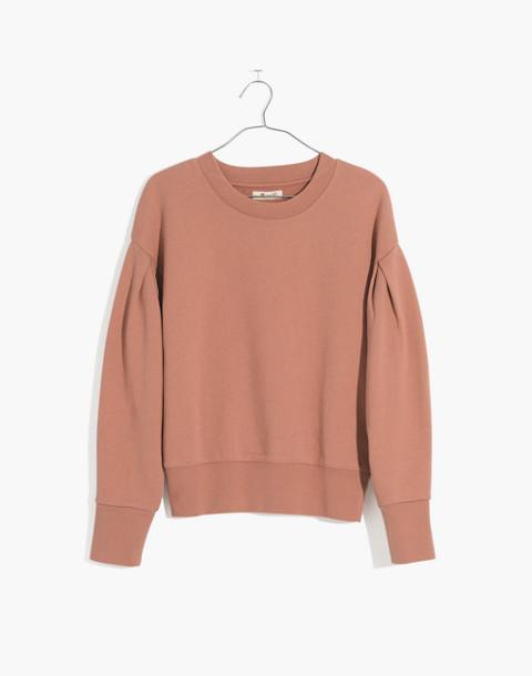 Pleat-Sleeve Sweatshirt in faded earth image 1