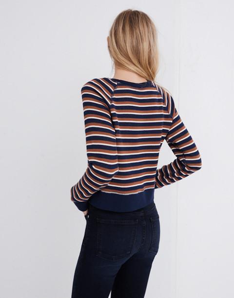 Shrunken Sweatshirt in Vicky Stripe in deep navy lark stripe image 3