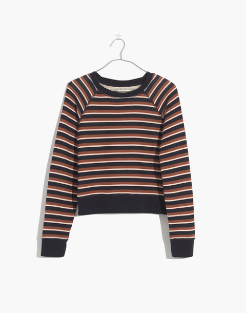 Shrunken Sweatshirt in Vicky Stripe in deep navy lark stripe image 4
