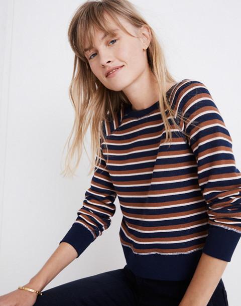 Shrunken Sweatshirt in Vicky Stripe in deep navy lark stripe image 1