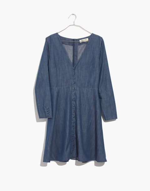 Denim Lilyblossom Button-Front Dress in landers wash image 4