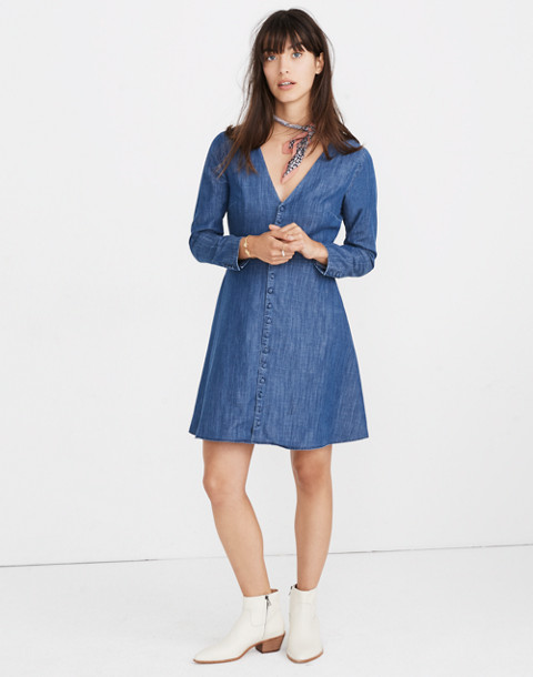 Denim Lilyblossom Button-Front Dress in landers wash image 1
